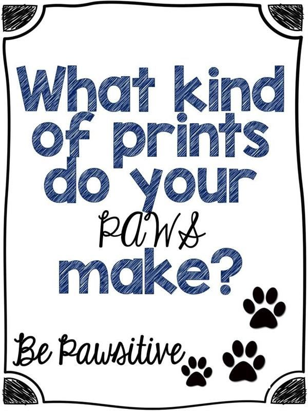 What kind of prints do your paws  make?  Be Pawsitive image