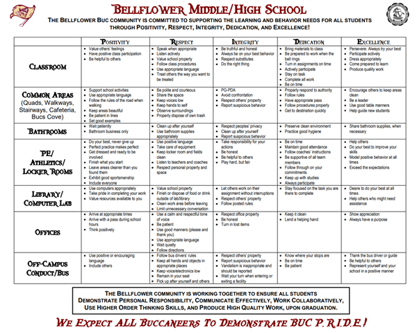 Image of the Bellflower Middle/High School PRIDE matrix.